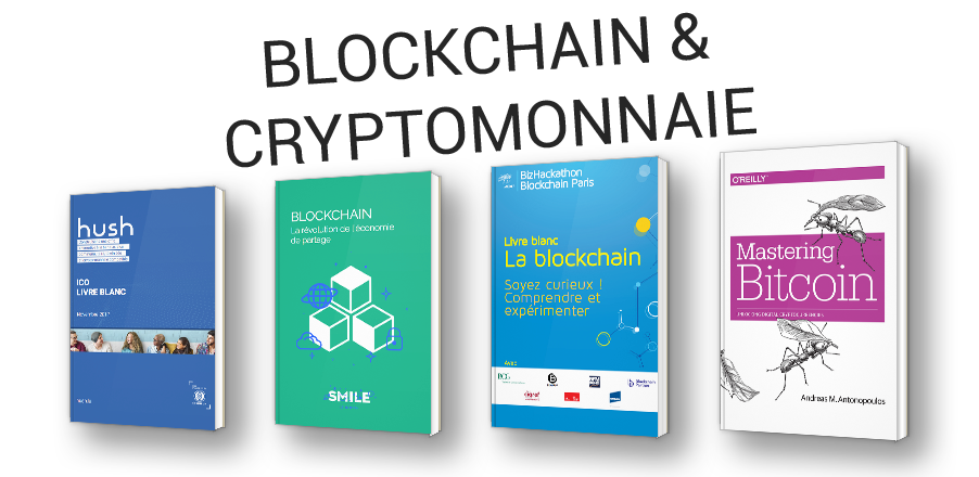 Comprendre la Blockchain et la crypto-monnaie (Bitcoin, Litecoin, etc...)