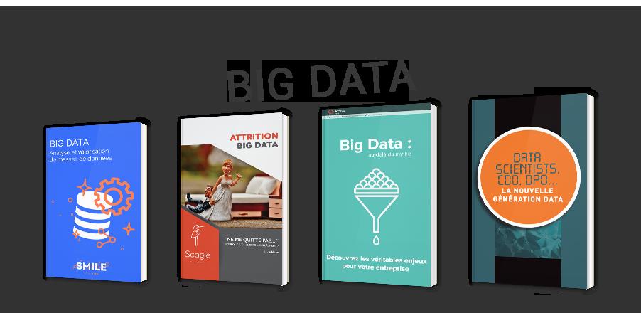 Le b.a.-ba du big data