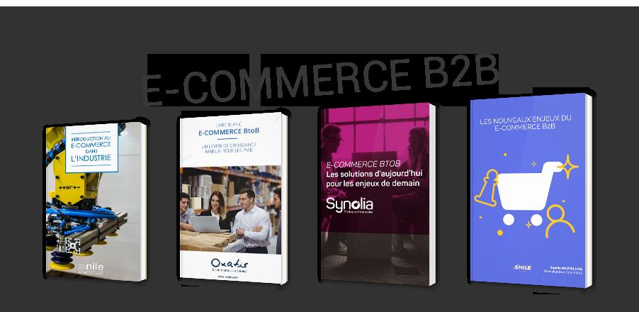 L'e-commerce B2B en théorie et en pratique