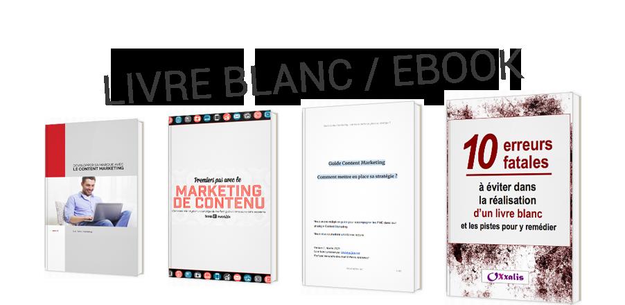 Livre blanc : définition, enjeux et stratégies