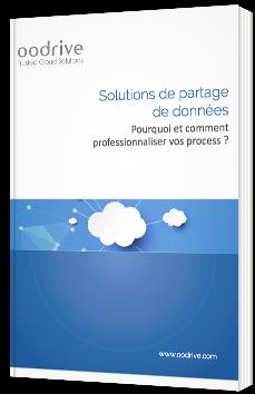 Solutions de partage de données - Pourquoi et comment professionnaliser vos process ?