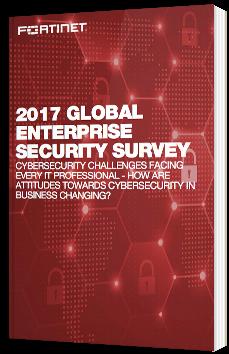 2017 Global enterprise security survey