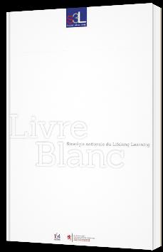 Stratégie nationale du Lifelong Learning