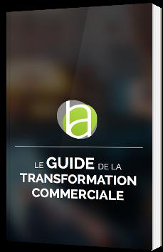 Le guide de la transformation commerciale