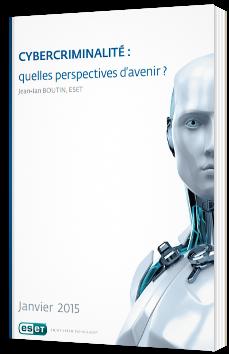 Cybercriminalité : quelles perspectives d'avenir ?