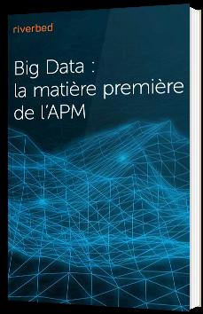 Big Data : la matière première de l'APM
