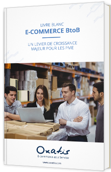 Livre blanc e-commerce BtoB