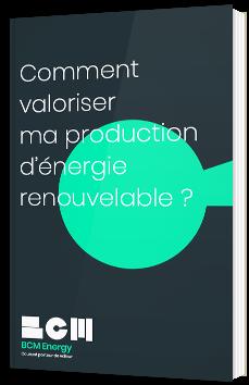 Comment valoriser ma production d'énergie renouvelable ?