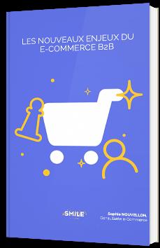 Les nouveaux enjeux du e-commerce B2B