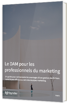 Le DAM pour les professionnels du marketing