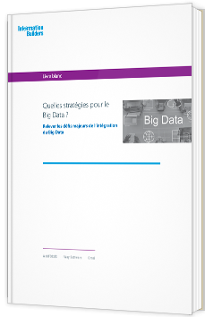 Quelles stratégies pour le Big Data ?