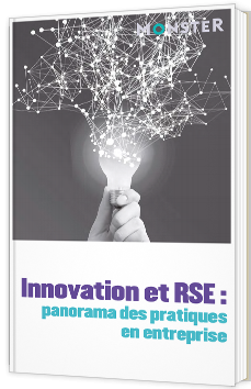 Innovation et RSE : panorama des pratiques en entreprise