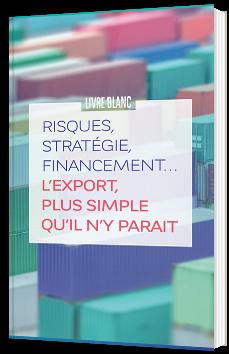 Risques, stratégie, financement… L'export plus simple qu'il n'y parait