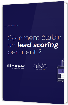 Comment établir un lead scoring pertinent ?