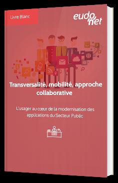 Transversalité, mobilité, approche collaborative