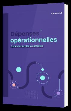 Dépenses opérationnelles : comment garder le contrôle ?