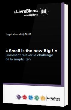 « Small is the new Big ! » Comment relever le challenge de la simplicité ?