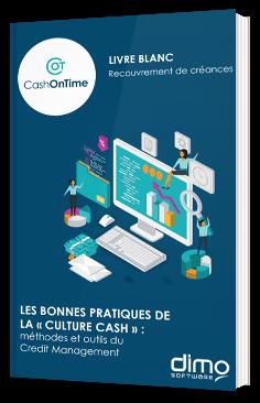 """Les bonnes pratiques de la """"Culture Cash"""" :  méthodes et outils du Credit Management"""