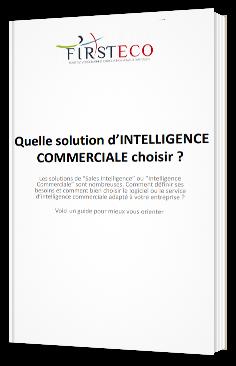 Quelle solution d'intelligence commerciale choisir ?