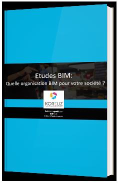 Etudes BIM : quelle organisation BIM pour votre société ?