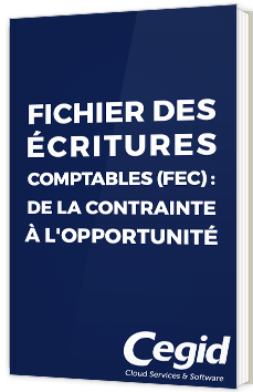 Fichier des écritures comptables (FEC) : de la contrainte à l'opportunité