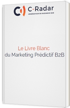 Le Livre Blanc du marketing prédictif B2B