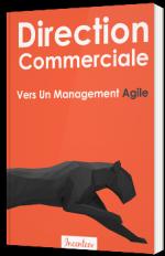 Direction Commerciale : Vers Un Management Agile