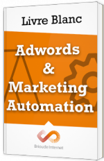 Opération spéciale Noël - Adwords & Marketing Automation