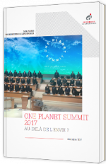 One Planet Summit 2017 - Au-delà de l'envie ?
