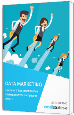 Data Marketing - Comment tirer profit du Data Mining pour vos campagnes email ?