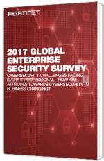 2017 Global enterprise security survey