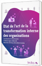 Etat de l'art de la transformation interne des organisations