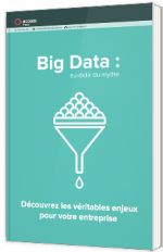 Big Data : au-delà du mythe