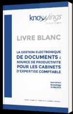 La gestion électronique de documents : source de productivité pour les cabinets d'expertise comptable