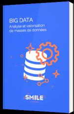 Big Data - Analyse et valorisation de masses de données