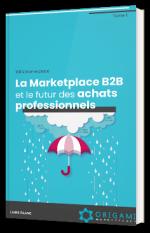 La Marketplace B2B et le futur des achats professionnels