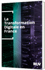 La Transformation Digitale en France