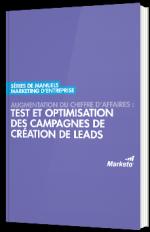 Augmentation du chiffre d'affaires : test et optimisation des campagnes de création de leads