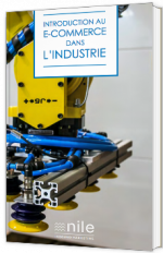 Introduction au E-commerce dans l'industrie