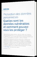 Protection des données personnelles - Quelles sont les données vulnérables et comment pouvez-vous les protéger ?