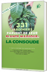 331 jardiniers parlent de leur plante magique : la consoude