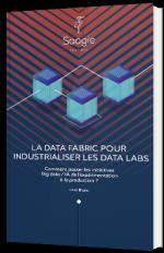 La data fabric pour industrialiser les data labs