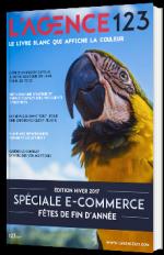 E-commerce : préparer les fêtes de fin d'année