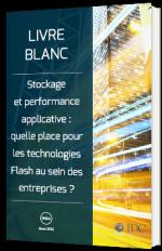Stockage et performance applicative : quelle place pour les technologies Flash au sein des entreprises ?