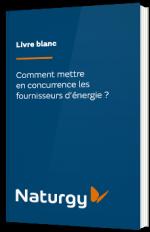 Comment mettre en concurrence les fournisseurs d'énergie ?