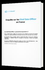 Enquête sur les Chief Data Officer en France