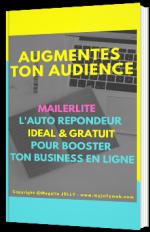 MailerLite - Le guide : L'autorépondeur gratuit et en français pour booster ton business en ligne