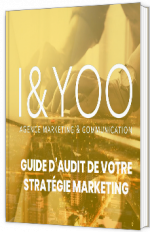 GUIDE AUDIT DE VOTRE STRATEGIE DIGITALE