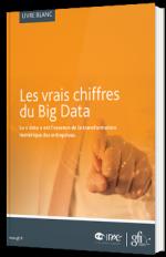 Les vrais chiffres du Big Data