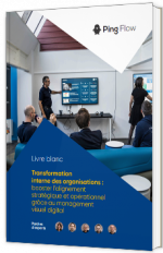 Transformation interne des organisations